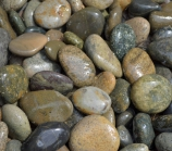 Mixed Mexican Beach Pebbles